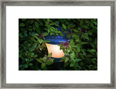 Landscape Lighting Framed Print by Tom Mc Nemar