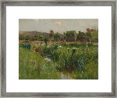 Landscape With Wild Irises Framed Print by Bruce Crane