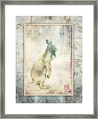 Lapin Du Jour Framed Print by Carol Leigh