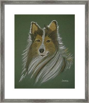 Lassie Framed Print by Sandra Frosst