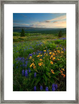 Last Light Over The Wenas Framed Print by Mike  Dawson