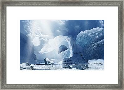 Last Of Their Kind Framed Print by Svetlana Sewell