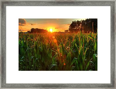 Late Summer Sunset Over The Harvest Framed Print by Richard Fairless