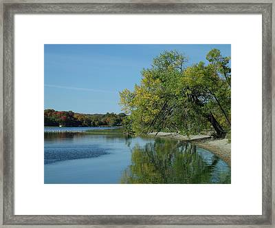 Lazy Fall Tree Over Glassy Lake Framed Print by Brian  Maloney