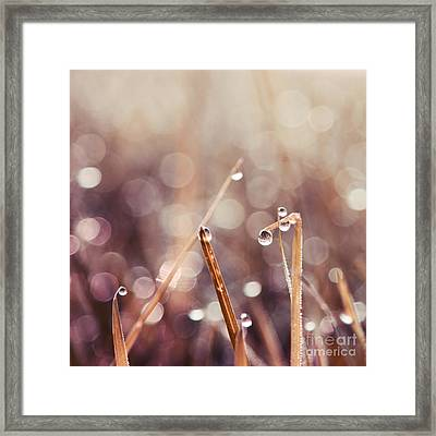 Le Reveil - S04d2 Framed Print by Variance Collections