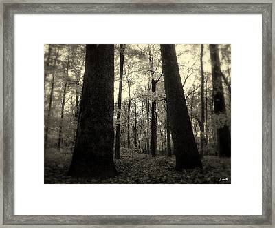 Lean Two Framed Print by Ed Smith