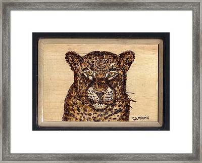 Leopard Framed Print by Clarence Butch Martin