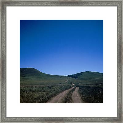 Let Go Framed Print by Winxd