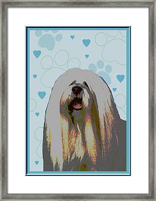 Lhasa Apso Framed Print by One Rude Dawg Orcutt