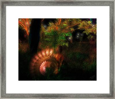 Lichtwesen Framed Print by Mimulux patricia no