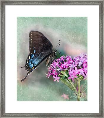 Life Is Sweet Framed Print by Betty LaRue