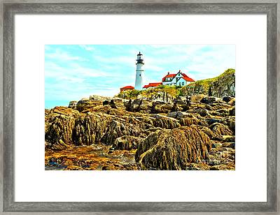 Light Over The Rocks Framed Print by Adam Jewell