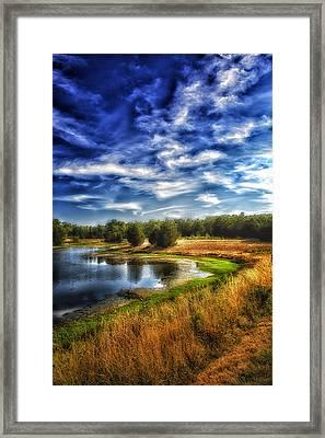 Light Peeks Through At Broemmelsiek Park Framed Print by Bill Tiepelman