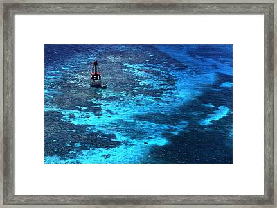 Lighting The Reef Framed Print by Skip Willits