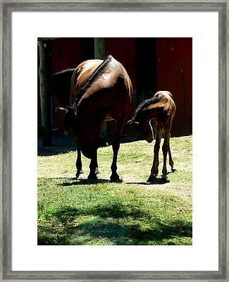 Like Mother Like Son Framed Print by De Beall