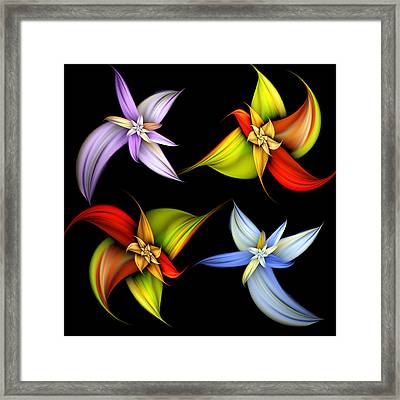 Lilly Montage Framed Print by Pam Blackstone