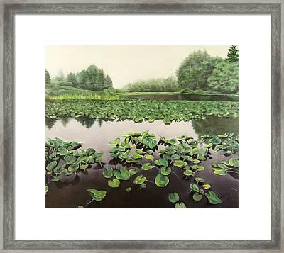 Lilly Pond Dreams Framed Print by Lorna Saiki