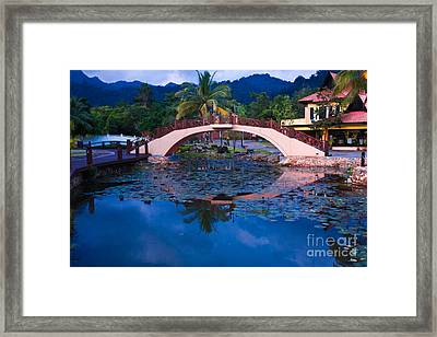 Lily Pond At Sunset Framed Print by John Buxton