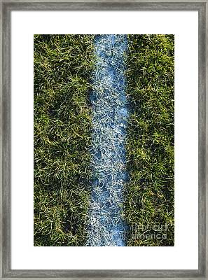 Line On Artificial Turf Framed Print by Paul Edmondson