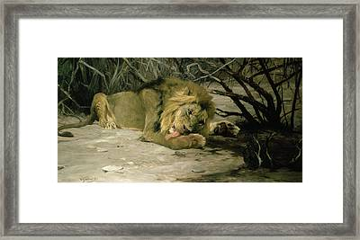 Lion Reclining In A Landscape Framed Print by Wilhelm Kuhnert