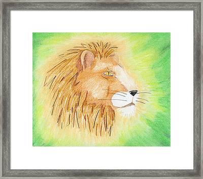 Lions Head Framed Print by Mark Schutter