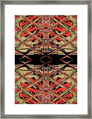 Lit0911001005 Framed Print by Tres Folia