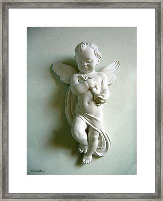 Little Angel Framed Print by Suhas Tavkar