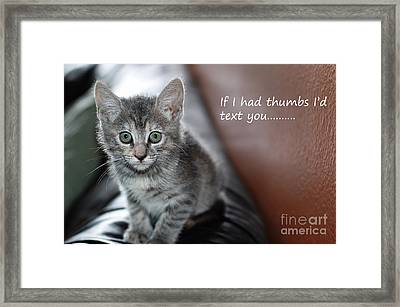 Little Kitten Greeting Card Framed Print by Micah May