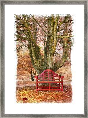 Little Red Bench Framed Print by Debra and Dave Vanderlaan