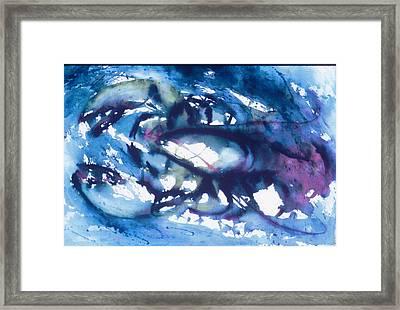 Lobster Framed Print by Edi Holley