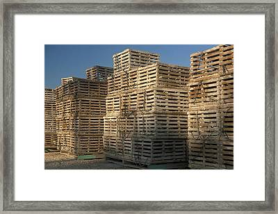 Lobster Traps Framed Print by Timothy McAfee