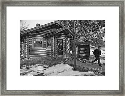 Log Cabin Library 11 Framed Print by Jim Wright