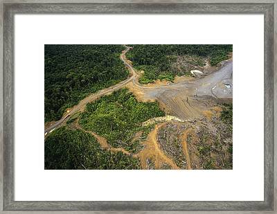 Logging Erosion In Lowland Tropical Framed Print by Gerry Ellis