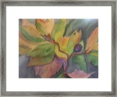 Lone Huckleberry Framed Print by Mary Tevebaugh