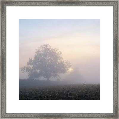 Lone Tree Framed Print by Paul Simon Wheeler Photography