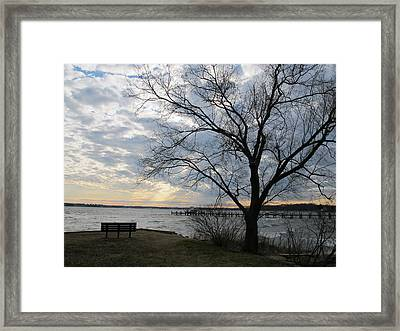 Lonely Bench At Dusk Framed Print by Valia Bradshaw
