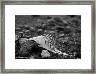 Loner Framed Print by Susan Herber