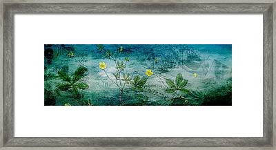 Long Ago And Far Away Framed Print by Bonnie Bruno
