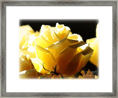 Look On The Bright Side  Framed Print by Carol Groenen