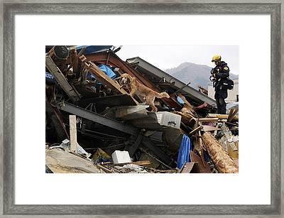Los Angles County K-9 Rescue Team Whose Framed Print by Everett