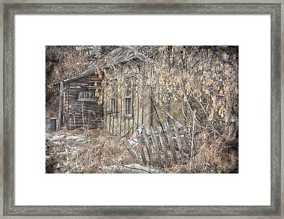 Lost Dog Framed Print by Jerry Cordeiro