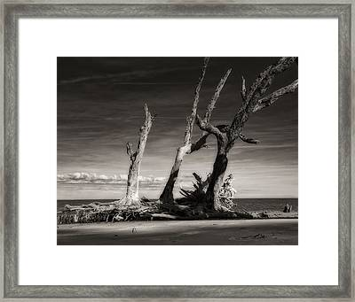 Lost World Framed Print by Mario Celzner
