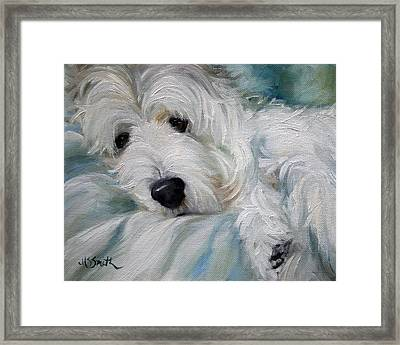 Lounging In The Shadows Framed Print by Mary Sparrow