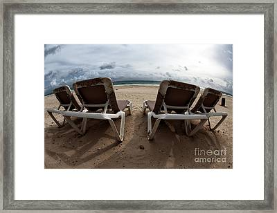 Lounging Framed Print by John Rizzuto