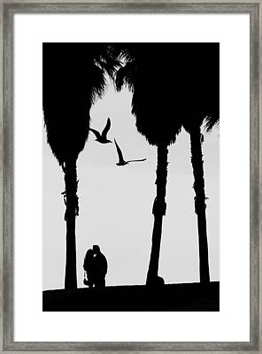 Love Birds Framed Print by Russell Styles