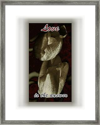 Love Framed Print by Lynne and Don Wright