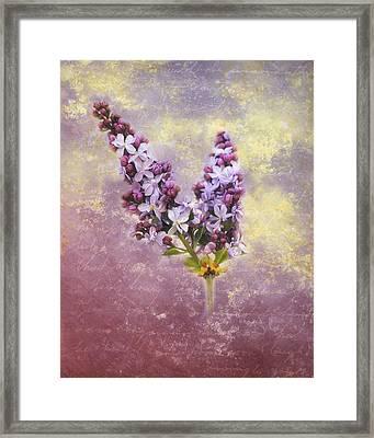 Love Letter Iv Framed Print by Jai Johnson