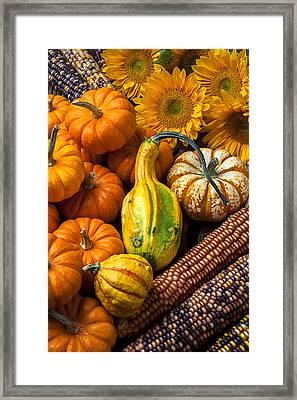 Lovely Autumn Framed Print by Garry Gay