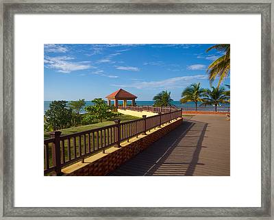 Lovely Lookout Framed Print by Tim Fitzwater