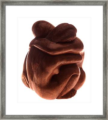 Lovers Framed Print by Victor De Schwanberg